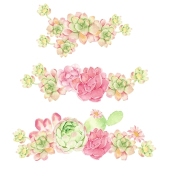 Watercolor cactus and succulent bouquet arrangement isolated