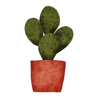 Акварель кактус сочный на иллюстрации горшечных растений