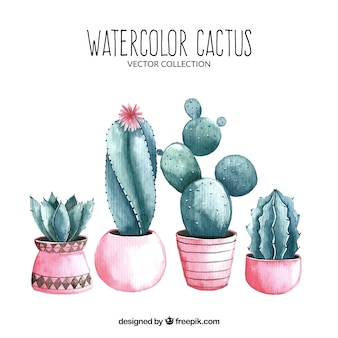 Watercolor cactus with lovely style