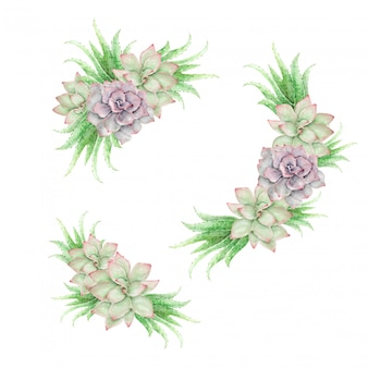 Watercolor cactuses and aloe vera vintage floral ornaments