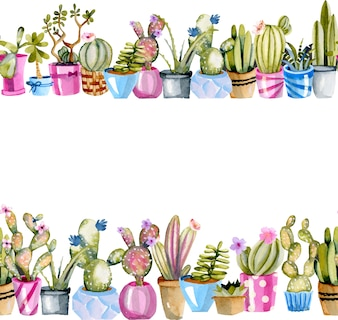 Watercolor cactuses in a pots illustrations