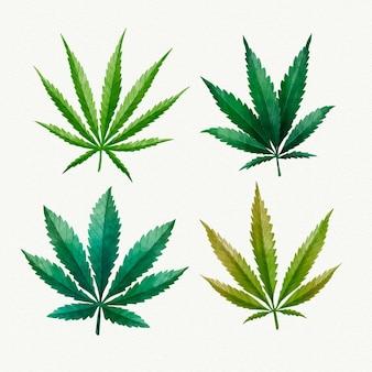 水彩大麻の葉セット