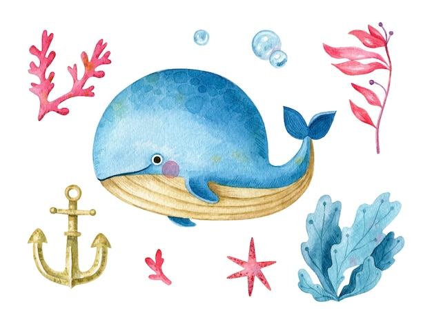 Watercolor cartoon whale sea element collection cartoon character