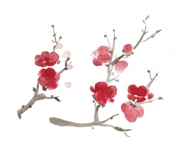 Watercolor cherry or apple flowers. pink japanese sakura blossom.
