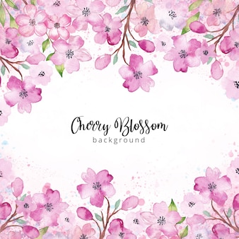 Watercolor cherry blossom background