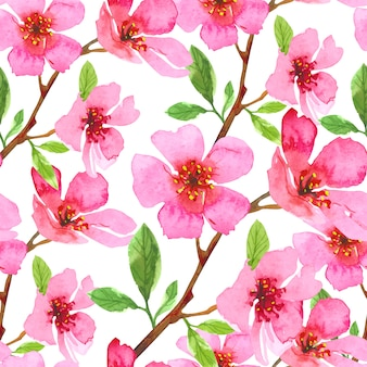 Watercolor cherry blossom flower seamless pattern. sakura beautiful spring floral template. colorful illustration isolated on white background.