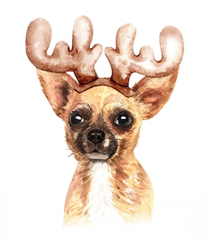 Watercolor chihuahua dog with reindeer antler hat