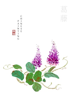 Watercolor chinese ink paint art illustration nature plant from the book of songs kudzu.