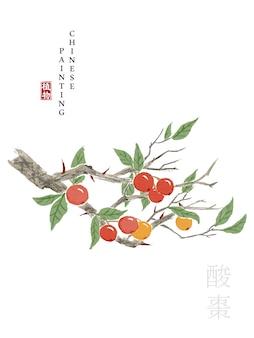 The book of songs sour jujube에서 수채화 중국어 잉크 페인트 아트 그림 자연 식물.