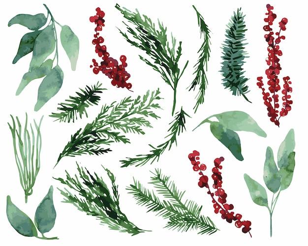 Акварель рождественские еловые листья иллюстрация