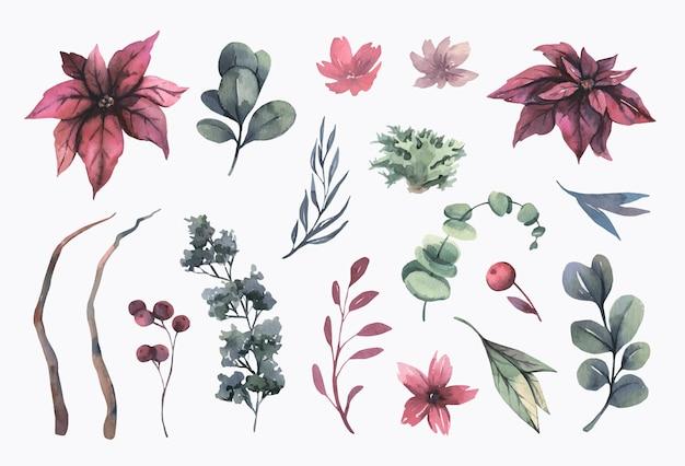 水彩のクリスマスの花のコレクション