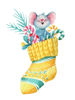 Watercolor christmas illustration of mouse in sock with decorations