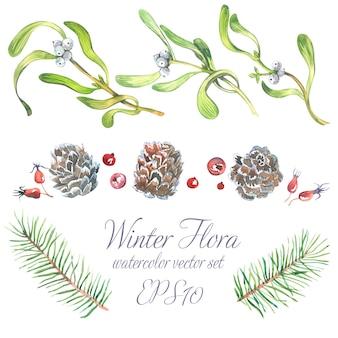 Акварельный рождественский набор из ветвей деревьев, веточек омелы с белыми ягодами.