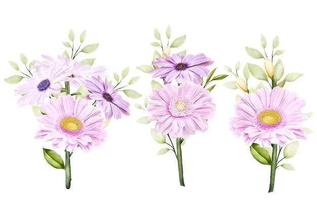 水彩菊セット