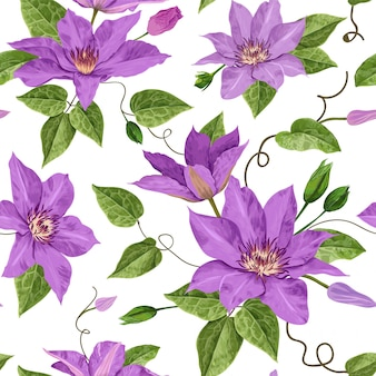 Watercolor clematis flowers floral tropical seamless pattern