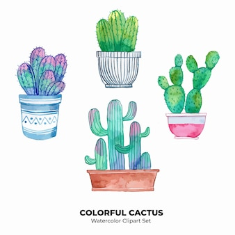 Watercolor clipart colorful cactus illustration set