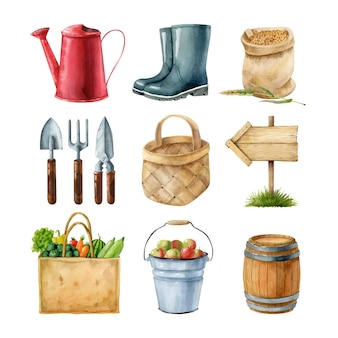 Watercolor clipart set with garden equipment and vegetables havest hand drawn illustration