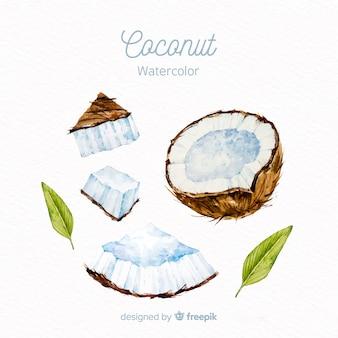 수채화 코코넛 배경