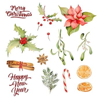 クリスマスの花の水彩画コレクション