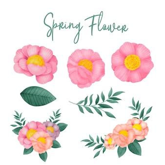 Акварель коллекция рисованной цветок