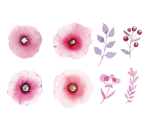 분홍색 추상 꽃과 나뭇 가지의 수채화 모음