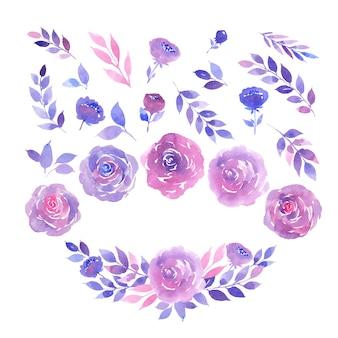 紫とピンクのバラ、小枝、葉の水彩画コレクション