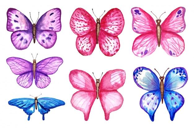 水彩のカラフルな蝶、白い背景で隔離。青、ピンク、紫の蝶春イラスト。