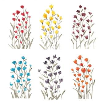 Набор акварели красочных полевых цветов