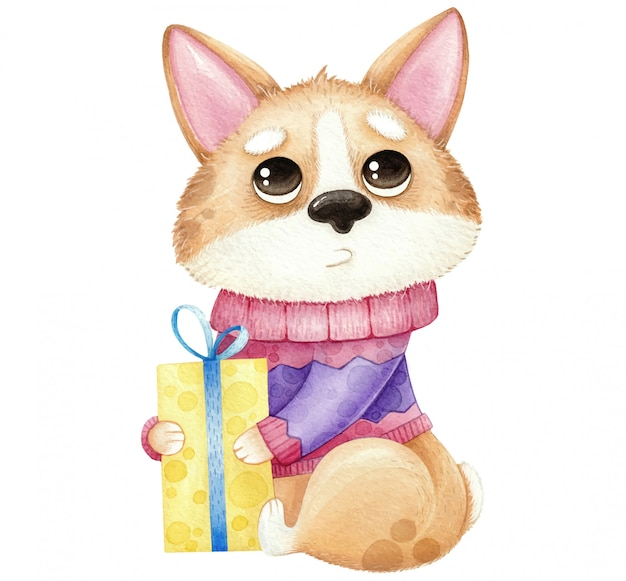 Watercolor cute dog corgi with gift isolated on white