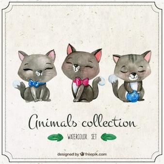 Watercolor cute kittens