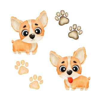 Watercolor cute puppy. watercolor illustration isolated on white background. watercolor illustration