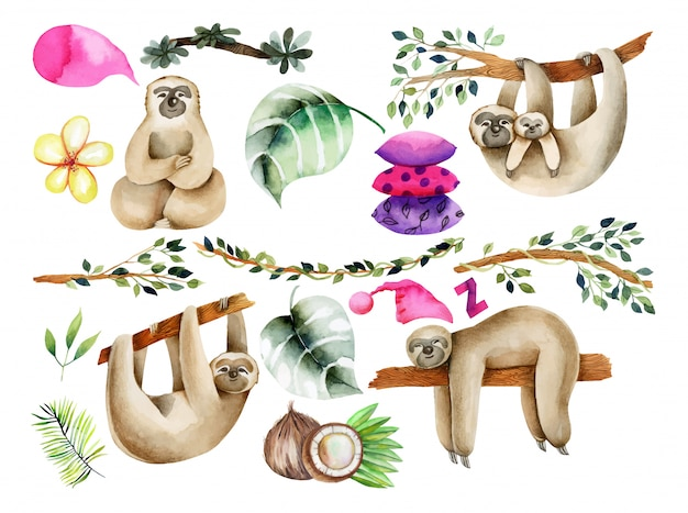 Watercolor cute sloths and natural elements