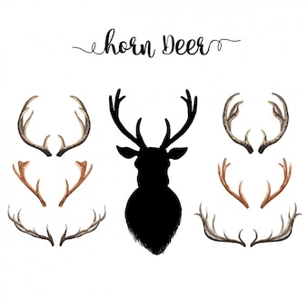 Watercolor deer horns collection