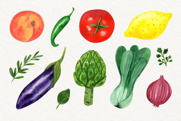 Коллекция акварелей различных овощей