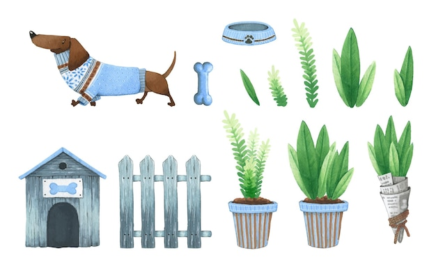 Watercolor dog in clothes, doghouse, fence, plants.