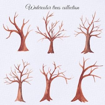 Watercolor dry trees set