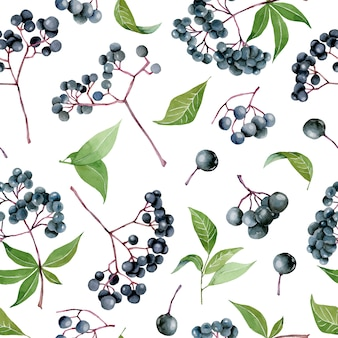 Watercolor elderberries seamless pattern