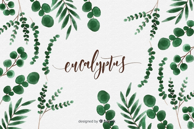 Watercolor eucalyptus leaves background