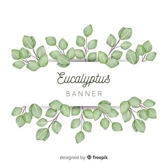 Watercolor eucalyptus leaves banner