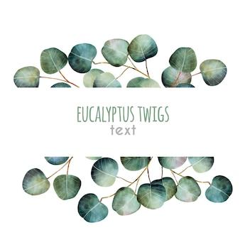 Watercolor eucalyptus twigs frame