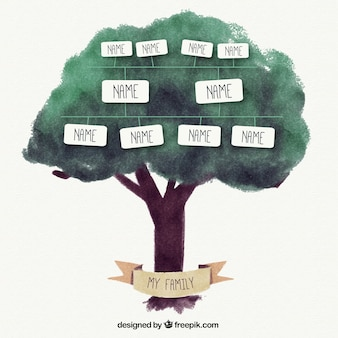 Watercolor family tree with text boxes