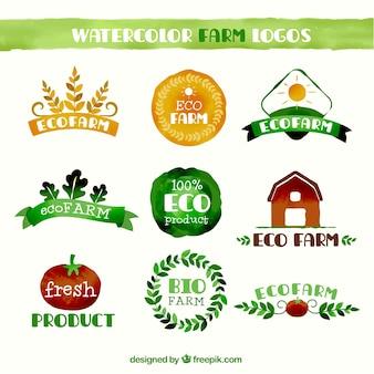 Watercolor farm logo collection