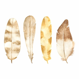 Watercolor feather set isolated on white