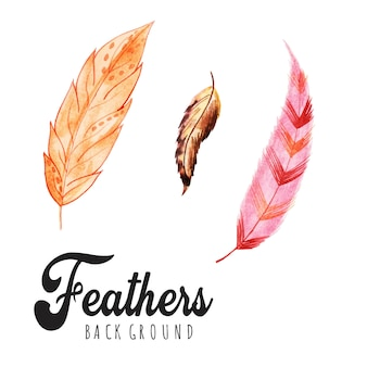 Watercolor feathers backgrounds