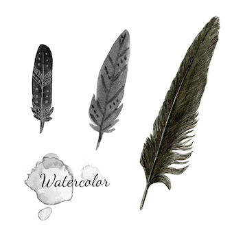Watercolor feathers. black feather of crow. hand drawn vector set.