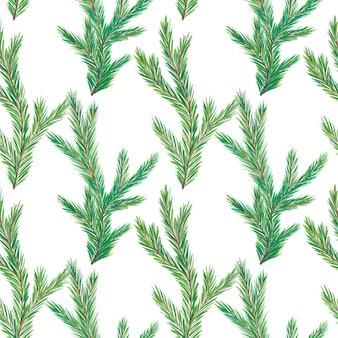 水彩のモミの木の枝のパターン