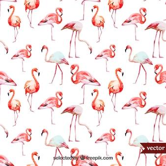 Акварель фламинго