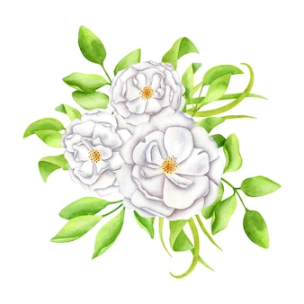 Watercolor floral arrangement white flowers with leaves and rose buds illustration