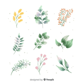 Watercolor floral branch pack