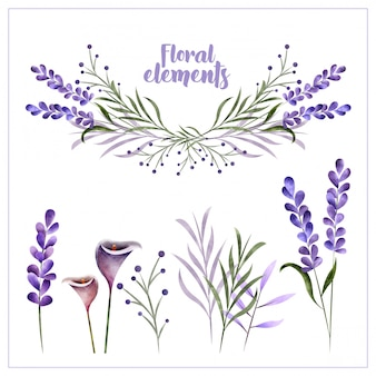 Watercolor floral decoration elements